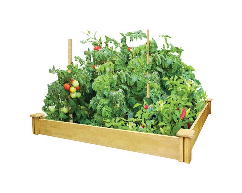 raised_garden_bed