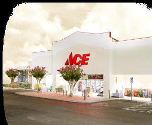 Toole's Ace Groveland Storefront