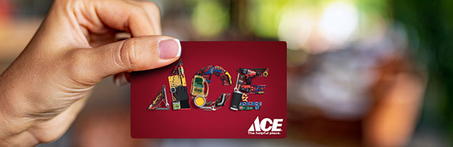 An image of someone holding up an Ace gift card.